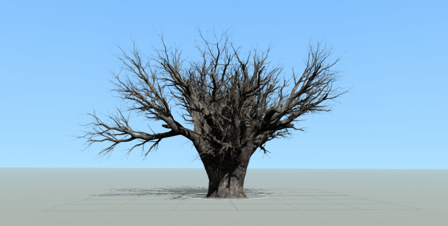 tree in speedtree.PNG