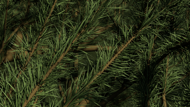 lehtiscattertesti-scatter-needles-pine-close2.png